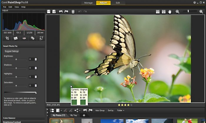 The adjustment workspace is seen in a screenshot of Corel PaintShop Pro X4 that lets users edit the light, color, shadow, and grain of their images. (Corel)