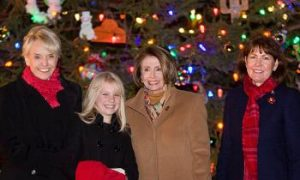 House Speaker Nancy Pelosi Lights Capitol Christmas Tree