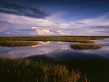 Big Cypress Marsh, Everglades National Park (Courtesy of John Brady, www.timeandlight.com)