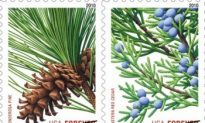 US Postage Stamps' Prices Expected to Rise 2 Cents