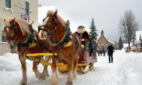 Sleigh Bells Ring at Barkerville Historic Town