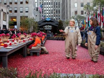 A GRAND BOG: Martha Stewart surveys a cranberry bog at Rockefeller Center on Tuesday as area school children were treated to an early Thanksgiving meal.  (The Epoch Times)