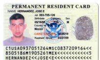 Undercover Investigation Leads to Forgery Charges for Counterfeit IDs