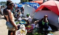 Agriculture in Post-Quake Haiti