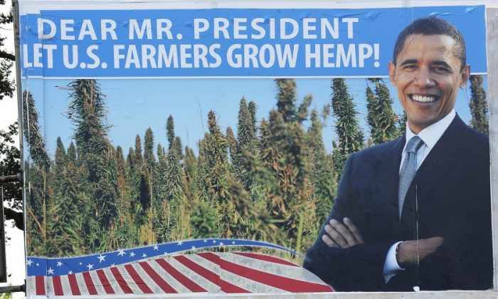 On June 11, 2012, protestors in Washington, D.C., appealed for a change to U.S. federal policy that prevents farmers from growing industrial hemp. Efforts from Kentucky this month aim to bring hemp farming back to the state. (Jewel Samad/AFP/Getty Images)