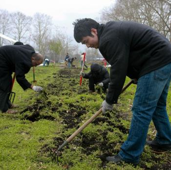 TILLING THE LAND: Volunteers at Red Hook Community Farm in Brooklyn prepare the soil for this year's spring planting. (Tara MacIsaac/The Epoch Times)