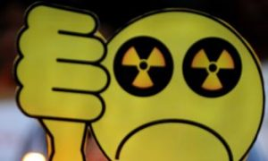 Anti-Nuclear Power Plant Protests Flare Up in India