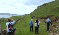 White Cow Island and Other Irish Treasures