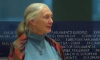Jane Goodall Focuses on Children to Save the Planet