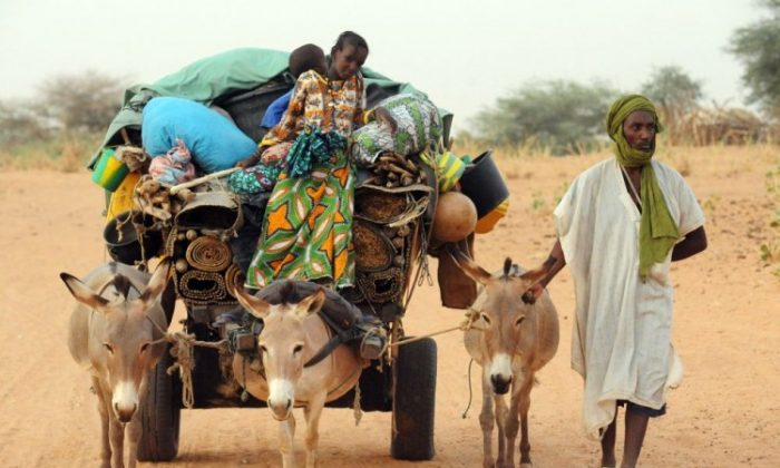 Ali Al Hassan, a Malian refugee, arrives with family members to the M'bere refugee camp near Bassiknou on May 2. More than 320,000 people have fled their homes in Mali since fighting began in mid-January, with more than half seeking refuge in neighboring countries. (Abdelhak Senna/AFP/GettyImages)