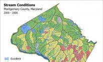 Keeping Maryland Waterways Healthy