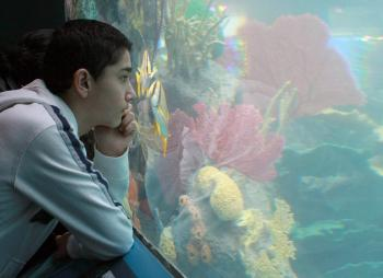 NEW SCHOOL: Young and old alike can learn much from the new Conservation Hall exhibit at the New York Aquarium. (Tara MacIsaac/The Epoch Times)