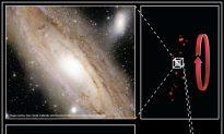 Disc of Dwarf Galaxies Dancing Around Andromeda