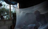 New Model Successfully Predicts Malaria Outbreak