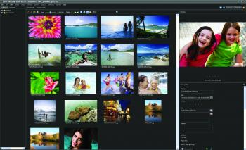The photo organizer in Corel PaintShop Photo Pro X3.  (Courtesy of Corel)