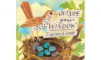 The Top Shelf: 'Outside Your Window—A First Book of Nature'