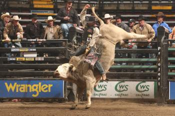 EXTREME SPORT: Professional bull rider Andy Watson. The Agri-Sport All-Star Weekend will showcase some of the best bull riders in Canada and the world.
