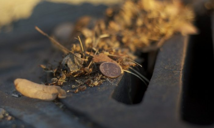 Canada's federal budget, released last week, includes the decision to end production of the penny. (Matthew Little/The Epoch Times)
