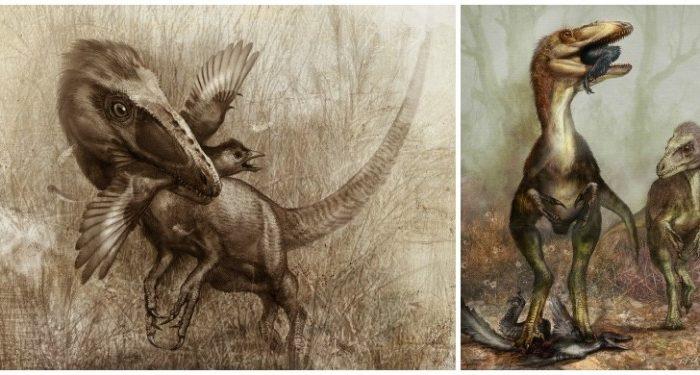 Sinocalliopteryx as a stealth hunter feeding on the dromaeosaur Sinornithosaurus (L), and the bird Confuciusornis (R). (Cheung Chungtat)