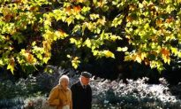 Green Spaces Good for Health
