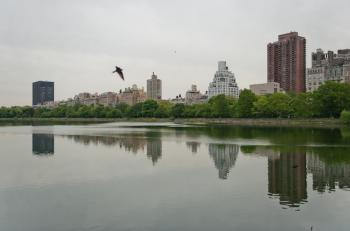 West side view from Central Park.  (Aloysio Santos/The Epoch Times)
