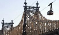 Koch Gets Bridge, Others Settle for Benches