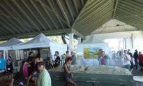 Arts Featured at Sunnyside Beach