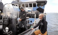 Whale Hunt Halted After Sea Shepherd Confrontation