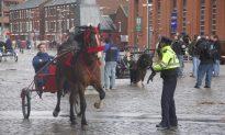Smithfield Horse Market Under Pressure