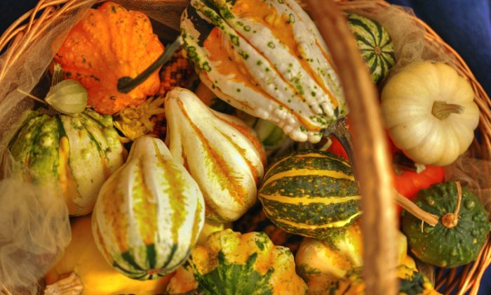 Squash is one of the five major vegetables that help the skin maintain a youthful appearance. (Cat Rooney/The Epoch Times)