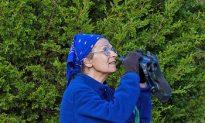 This is New York: Starr Saphir, Urban Bird-Watching Tour Guide