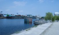 Finding Nature Next to Newtown Creek