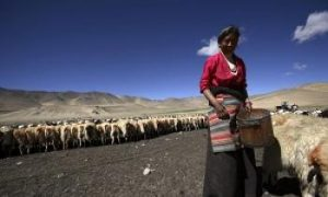 The Distorted Image of Tibet (Part I)