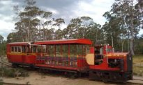 Tasmania's Last Bush Tram: A Link to Bygone Days
