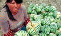 The Fallout from China's Exploding Watermelons