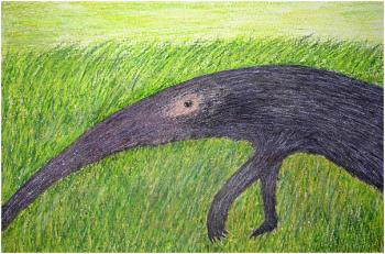 Voitsekhovsky's pictures capture a youthful ambiance, leaving people with an impression of genuine authenticity. His touching drawing, 'My Never Ending Friend,' shows an anteater, without a beginning or an end. (The Epoch Times)