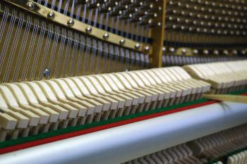 The system of moving parts inside the piano is called the action. Technicians manipulate the action and reshape the hammers to correct the tone and regulation. (Allen Zhou/The Epoch Times)