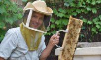 This Is New York: Michael Beaman, The Brooklyn Bee Czar