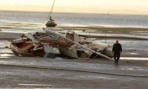 Clean-Up Begins After Devastating Storms Hit NZ