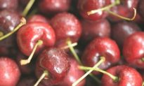 'Bing' Them Cherries On!