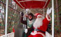 'Bright Nights' All Set for the Christmas Season