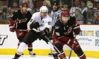 Lawyers, Sports Leagues Eye Coyotes Bankruptcy