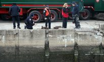 Dolphin Stuck in Toxic Brooklyn Canal