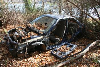An abandoned car in Pelham Bay Park on Monday. (Courtesy of NYC Parks Advocates )