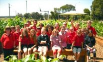 Kids and Healthy Eating, a Community Affair