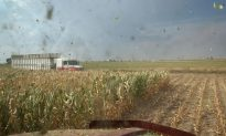 Waste-Based Ethanol to Achieve Price Parity with Corn Ethanol