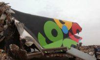 Libyan Airbus A330-200 Crashes, One Survivor