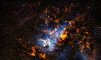 Star Formation in the Cold Dusty Carina Nebula (Photo)