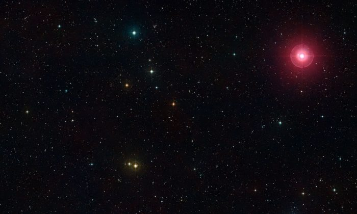 A photographic view created from the Digitized Sky Survey 2 of part of the constellation of Cetus (The Sea Monster). The bright red star at the upper right is the famous variable star Mira (Omicron Ceti) and towards the lower left is the region of space studied in a new survey, using ESO's VLT and the SINFONI instrument, of the feeding habits of young galaxies as they grew through cosmic time. (Digitized Sky Survey 2. Acknowledgment: Davide De Martin.)