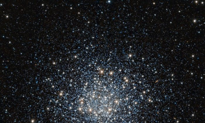 This striking view of the globular star cluster Messier 55 in the constellation of Sagittarius (The Archer) was obtained in infrared light with the VISTA survey telescope. (ESO/J. Emerson/VISTA. Acknowledgment: Cambridge Astronomical Survey Unit)